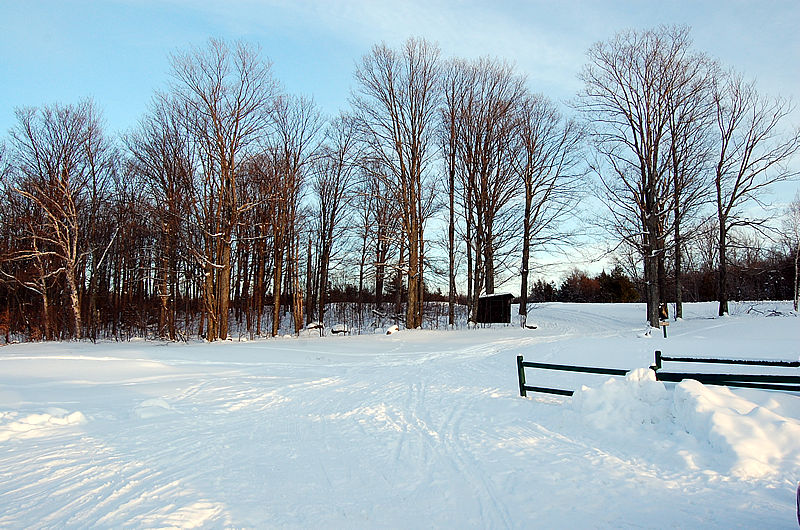 Tupper Lake Cross Country Ski Trail Head
